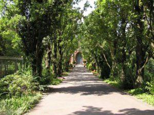 800px-2006-07-25_Friedhof_Grunewald_Hauptweg[1]